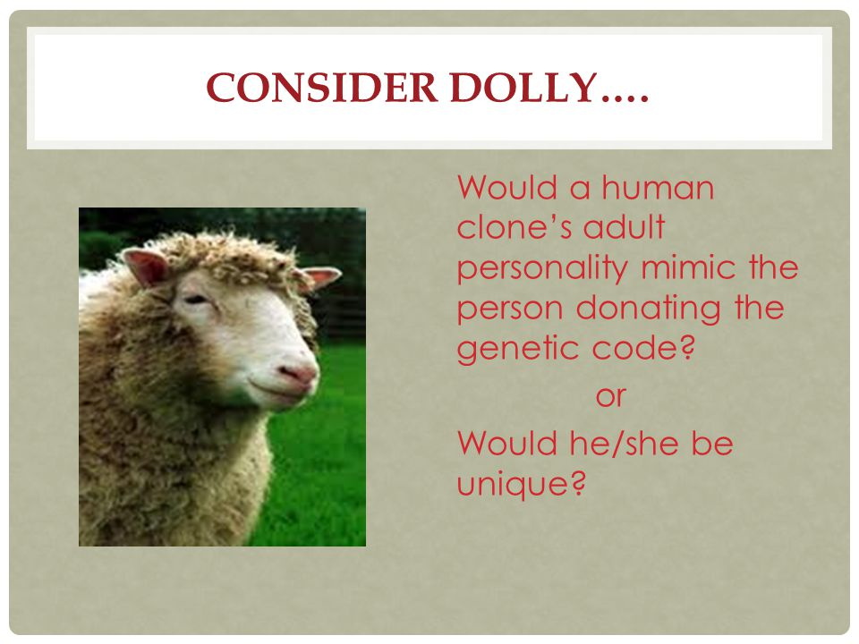 Consider Dolly….