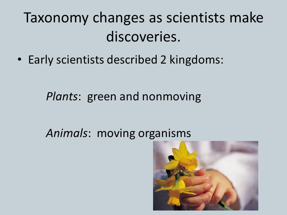 Taxonomy changes as scientists make discoveries.