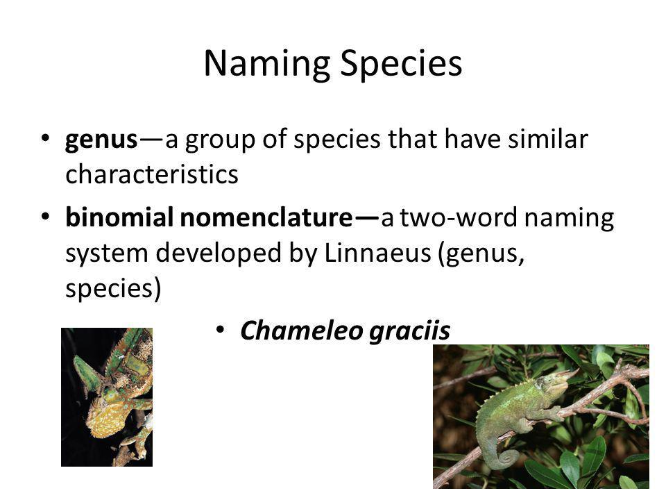 Naming Species genus—a group of species that have similar characteristics.