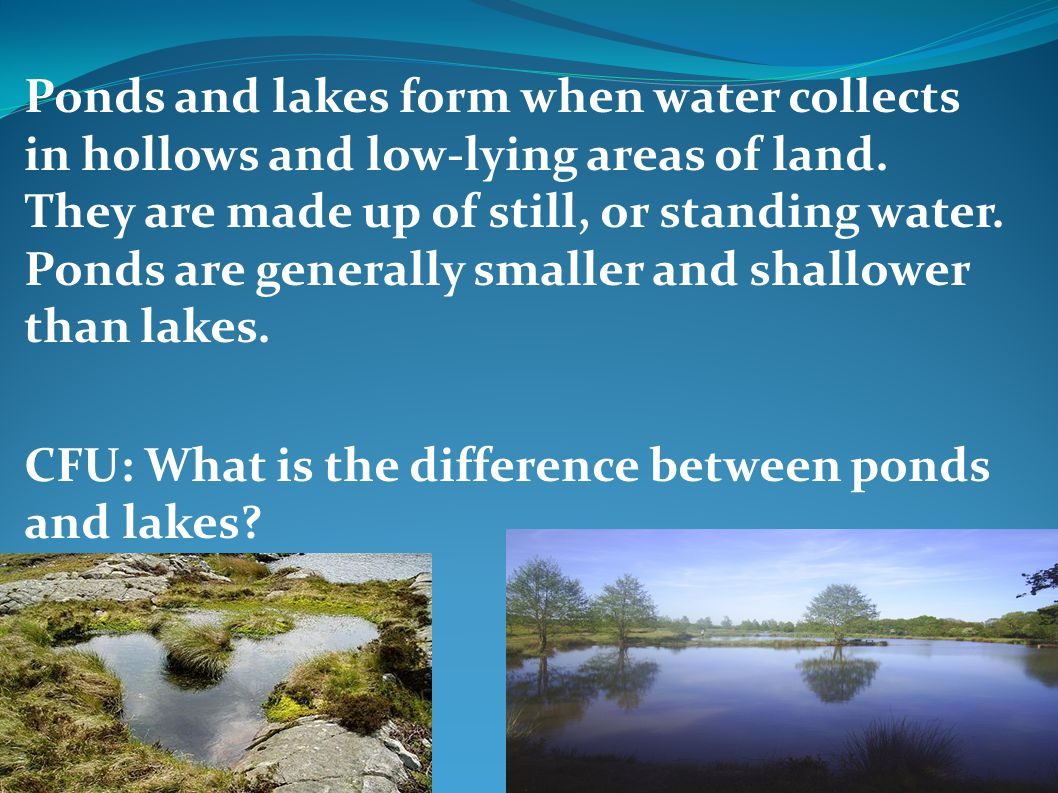 Ponds and lakes form when water collects in hollows and low-lying areas of land. They are made up of still, or standing water. Ponds are generally smaller and shallower than lakes.