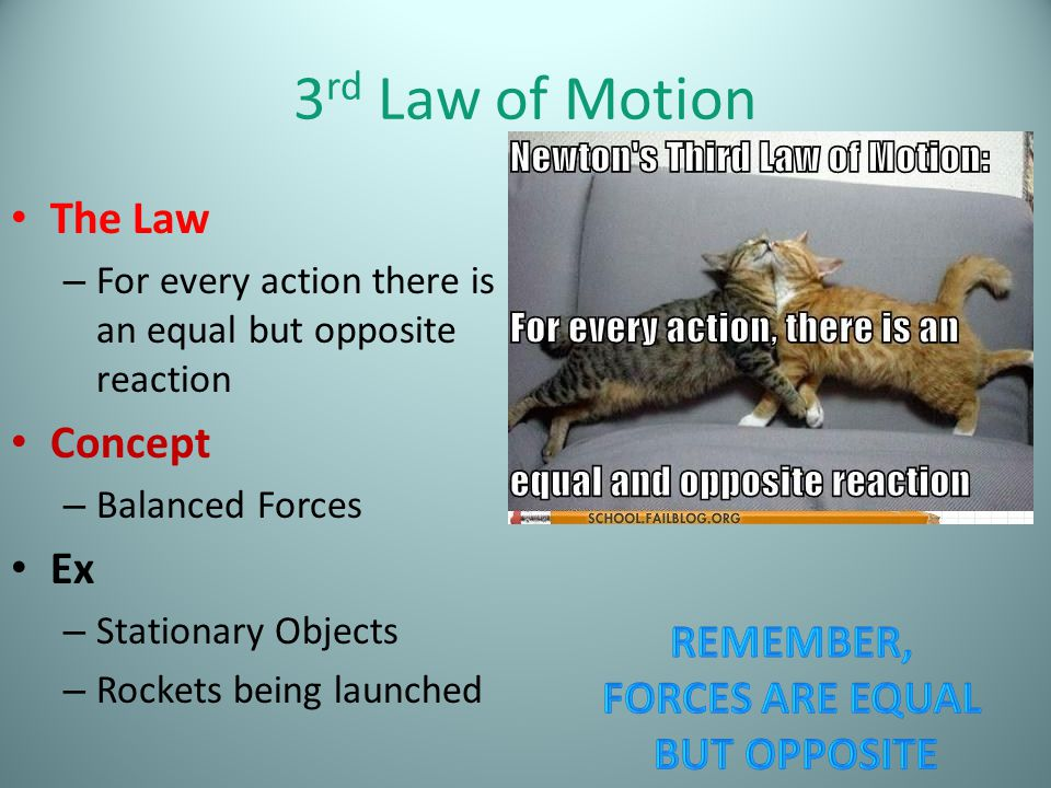 3rd Law of Motion The Law Concept Ex Remember, forces are equal