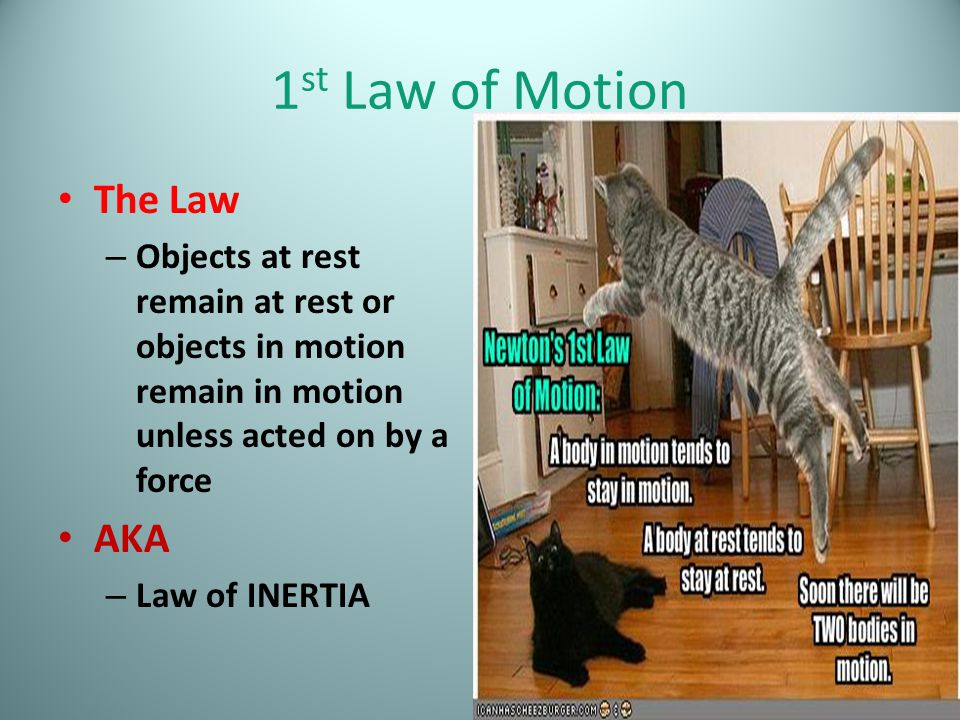 1st Law of Motion The Law AKA
