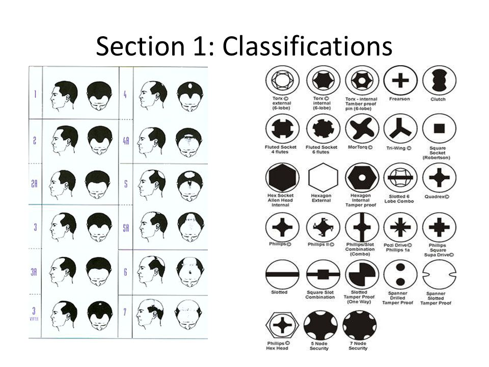 Section 1: Classifications