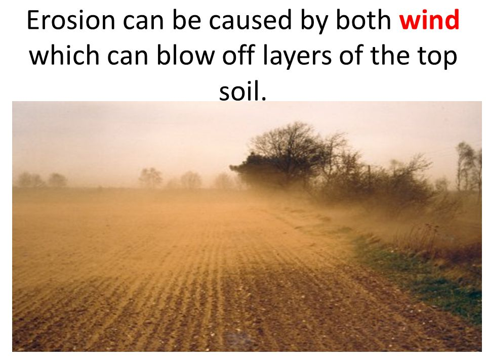 Erosion can be caused by both wind which can blow off layers of the top soil.
