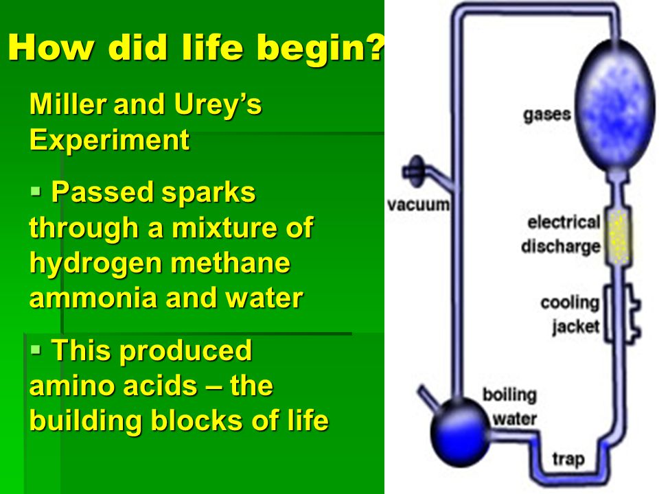 How did life begin Miller and Urey's Experiment