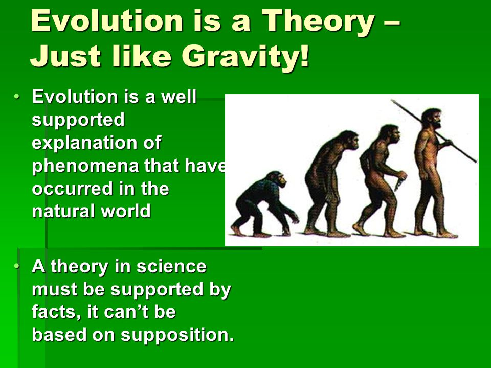 Evolution is a Theory – Just like Gravity!