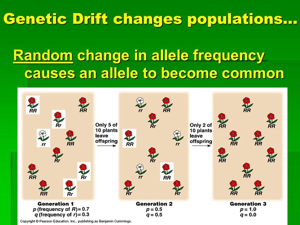 Genetic Drift changes populations…