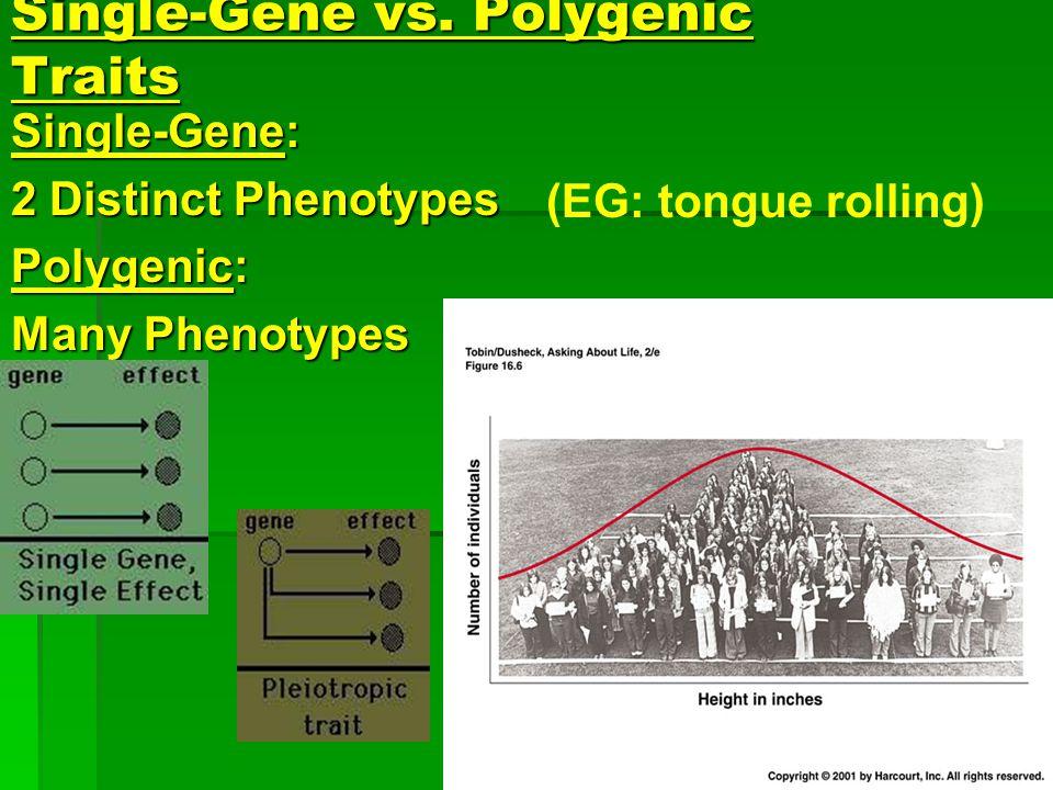 Single-Gene vs. Polygenic Traits