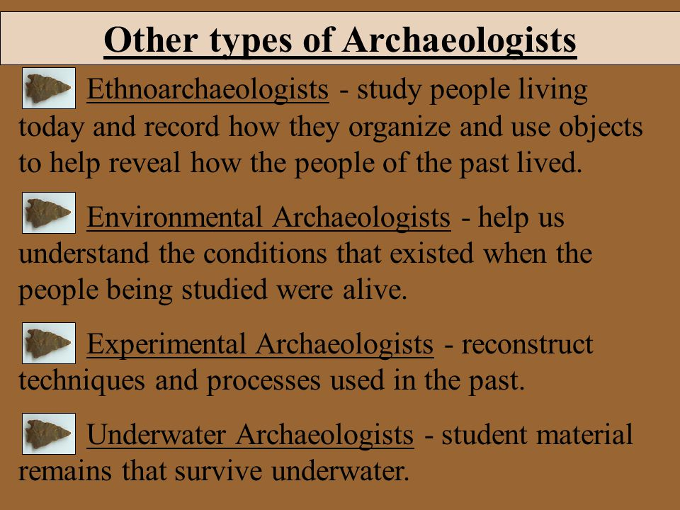 Other types of Archaeologists