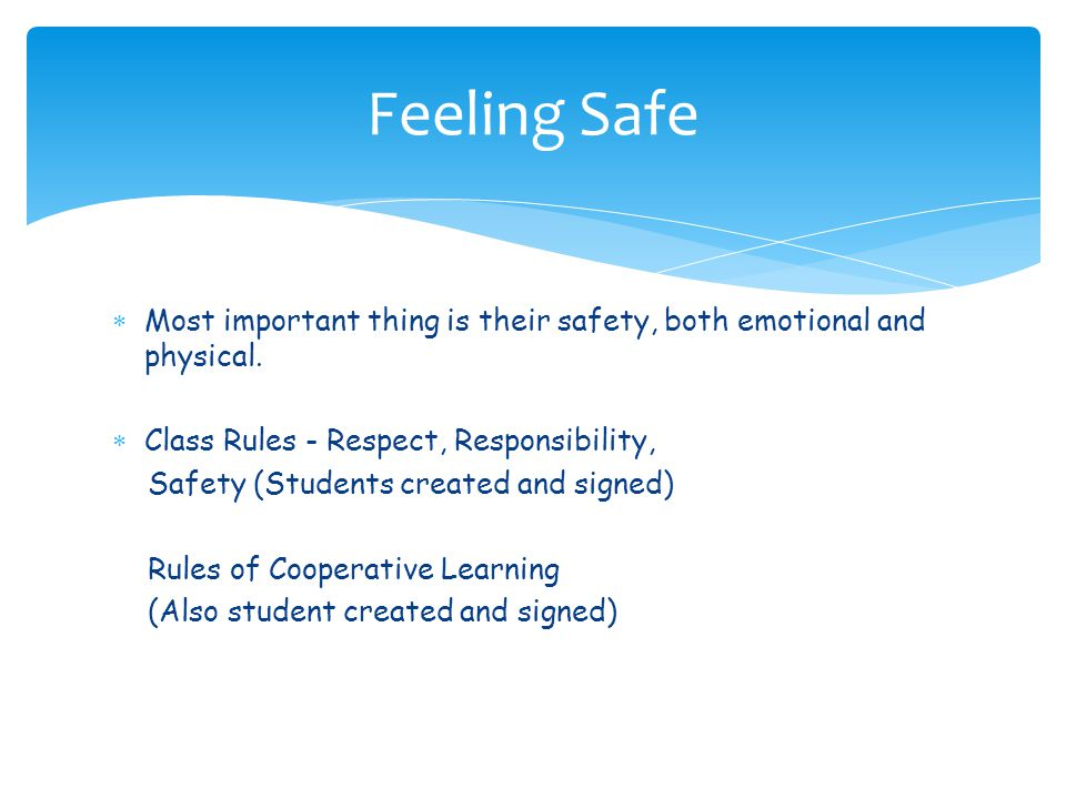 Feeling Safe Most important thing is their safety, both emotional and physical. Class Rules - Respect, Responsibility,