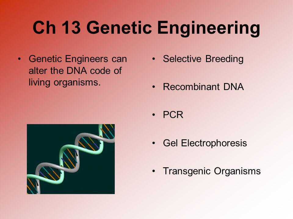 Ch 13 Genetic Engineering