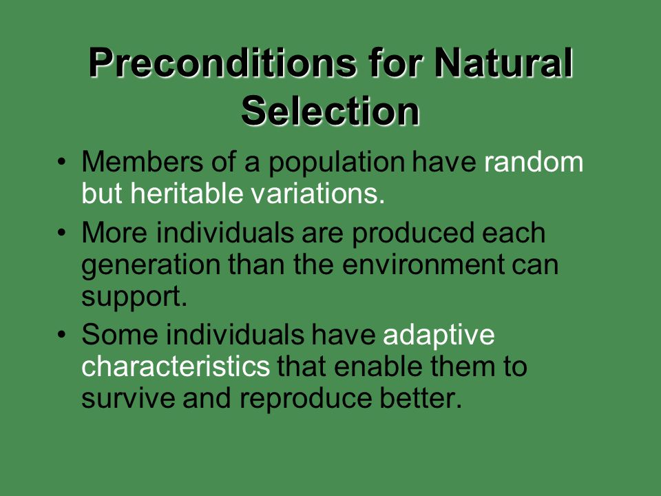 Preconditions for Natural Selection