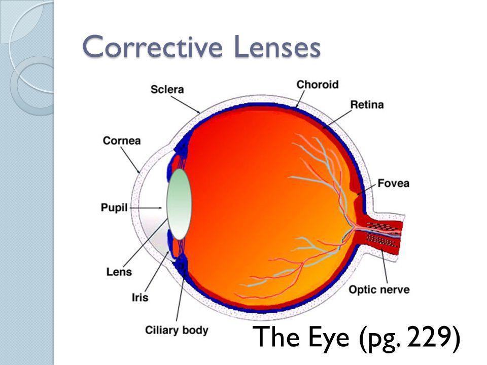 Corrective Lenses The Eye (pg. 229)