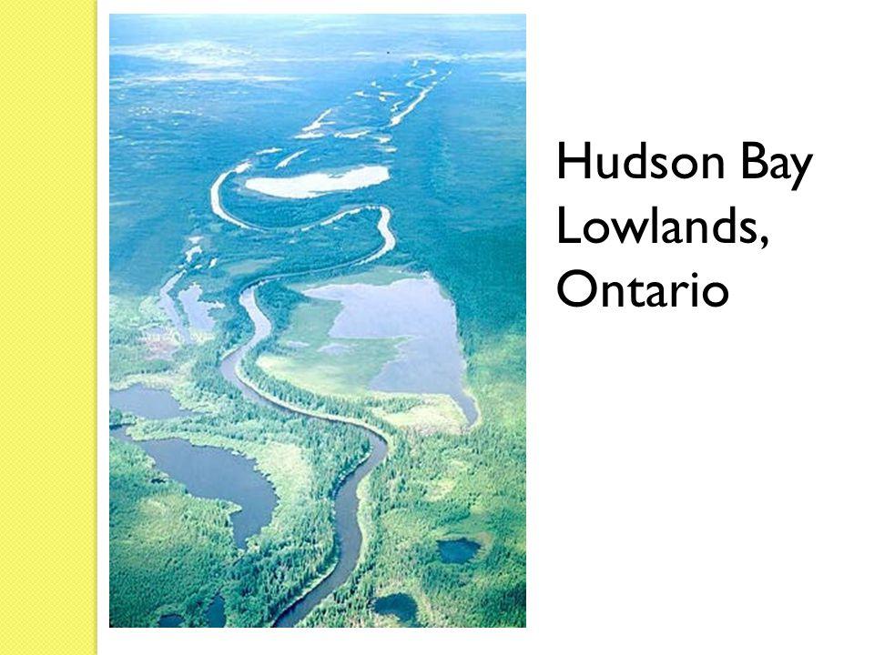 Hudson Bay Lowlands, Ontario