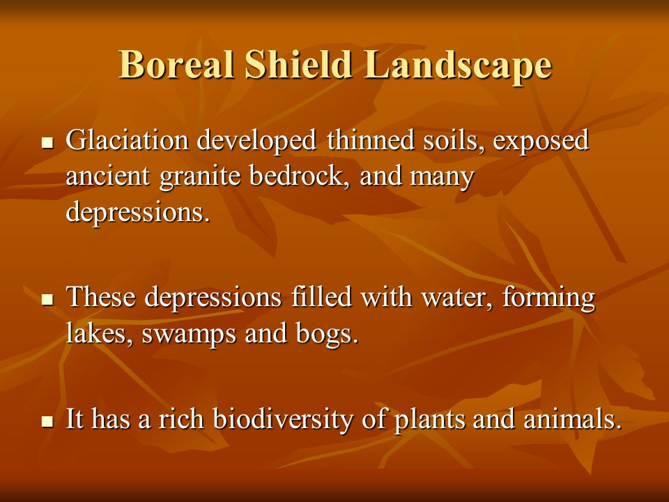 Boreal Shield Landscape