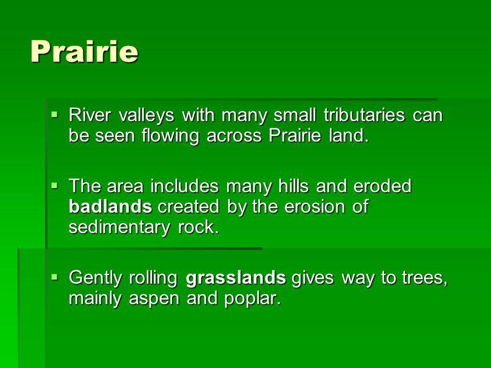 Prairie River valleys with many small tributaries can be seen flowing across Prairie land.
