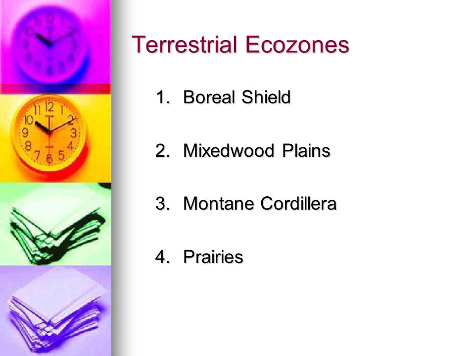 Terrestrial Ecozones 1. Boreal Shield 2. Mixedwood Plains