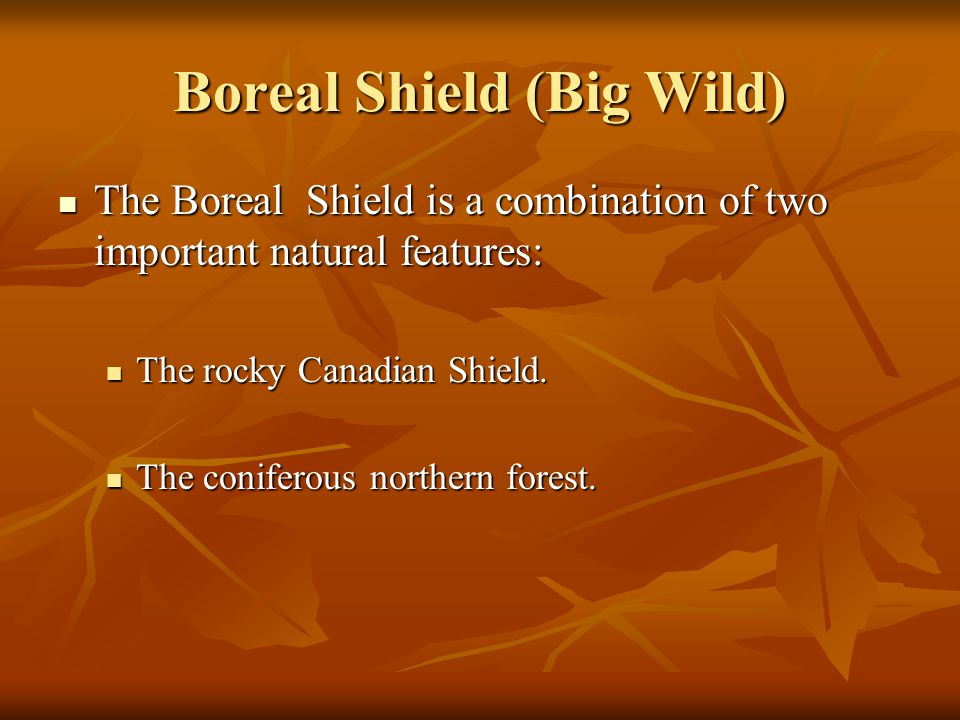 Boreal Shield (Big Wild)