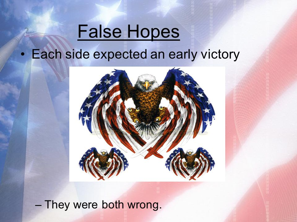 False Hopes Each side expected an early victory They were both wrong.
