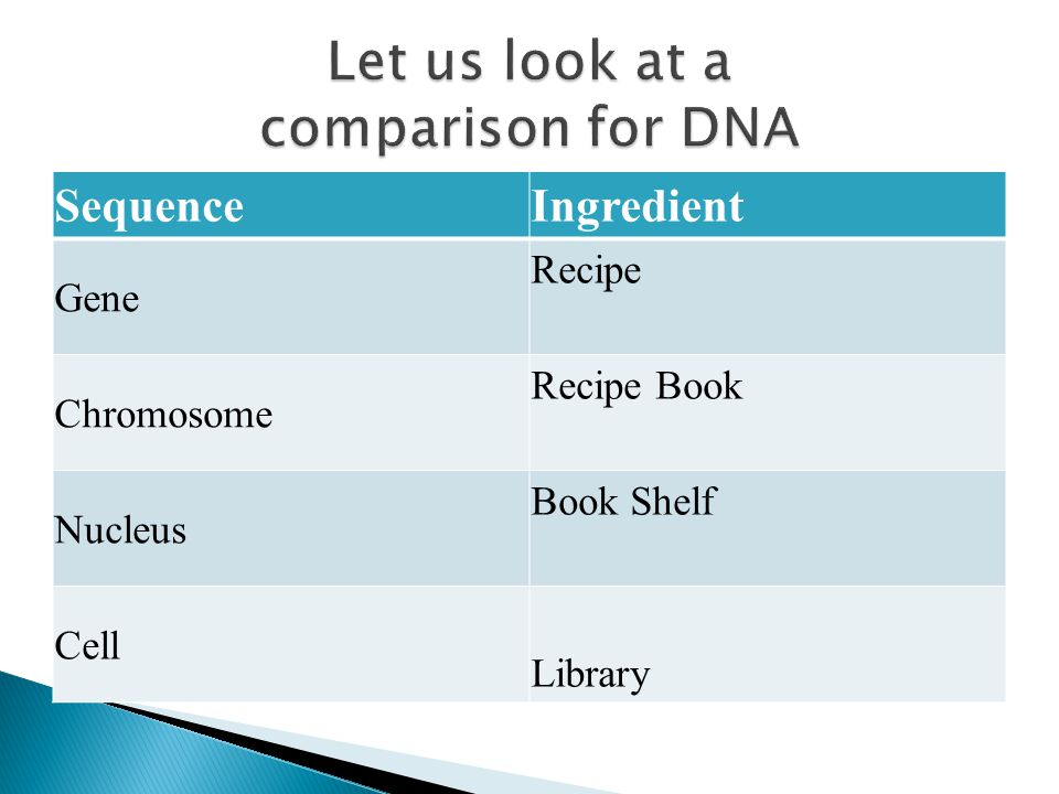 Let us look at a comparison for DNA