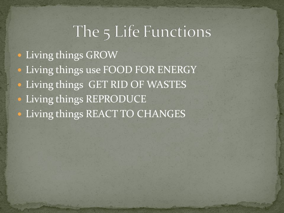The 5 Life Functions Living things GROW
