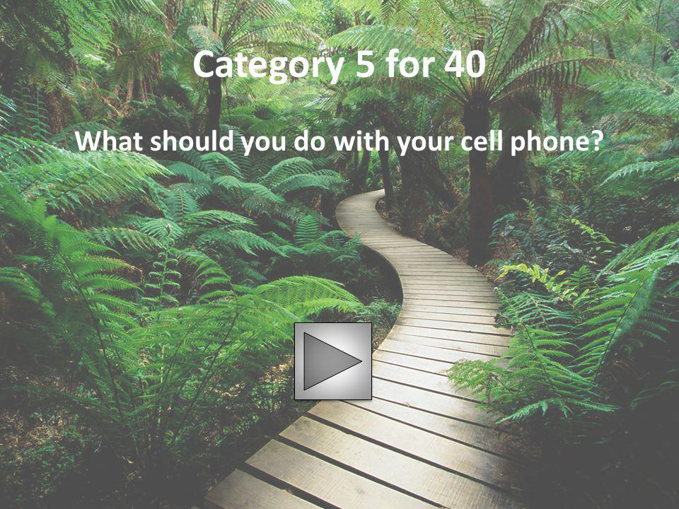 What should you do with your cell phone