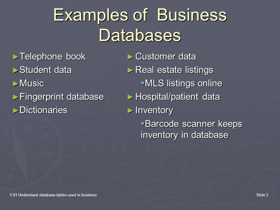 Examples of Business Databases