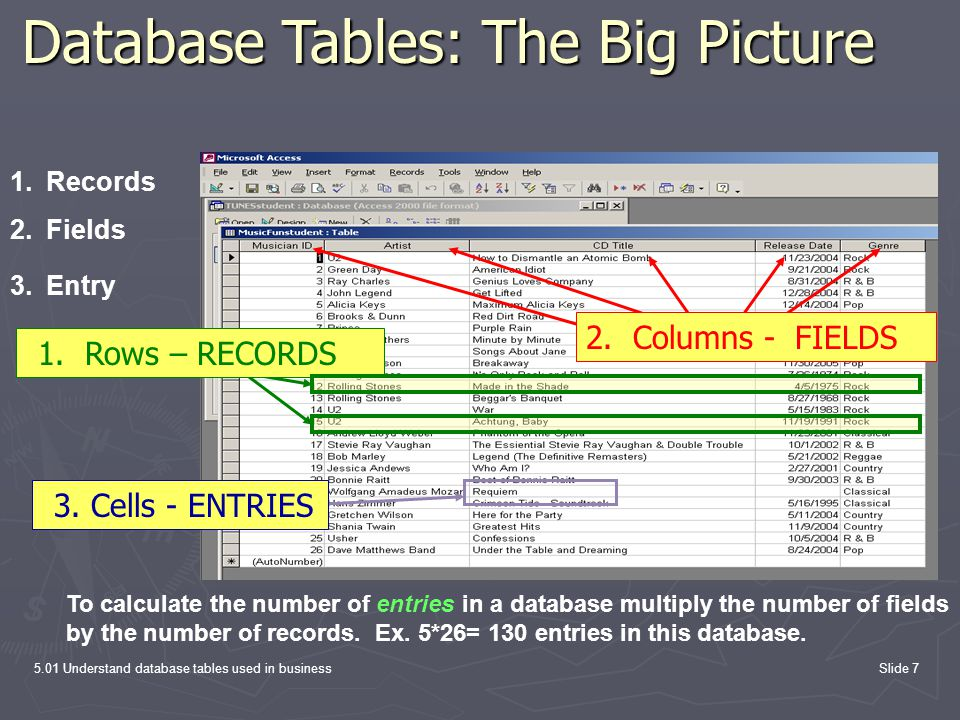 Database Tables: The Big Picture