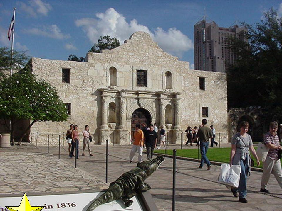 Alamo today