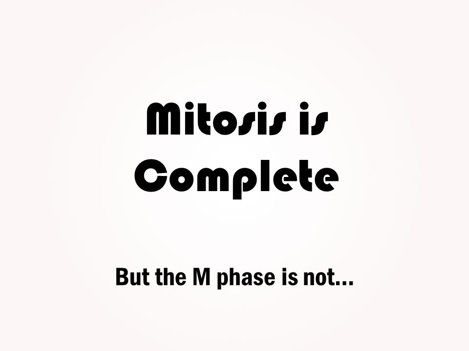 Mitosis is Complete But the M phase is not…