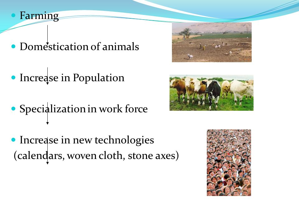Farming Domestication of animals. Increase in Population. Specialization in work force. Increase in new technologies.