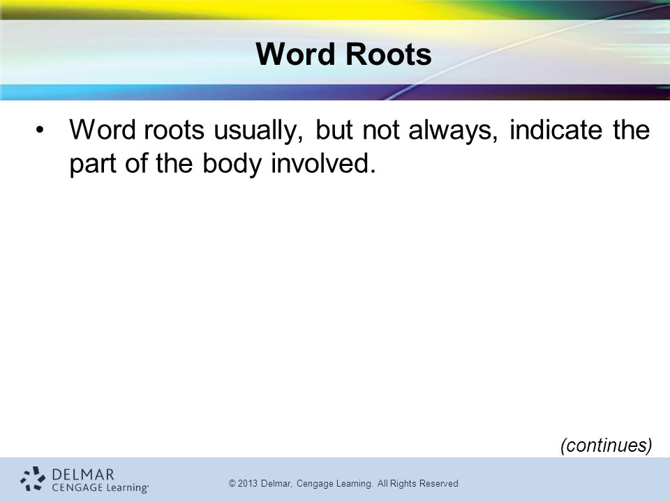 Word Roots Word roots usually, but not always, indicate the part of the body involved. (continues)