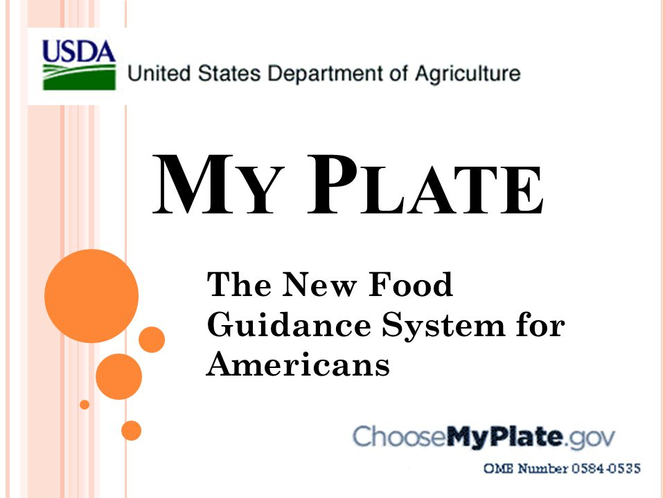 The New Food Guidance System for Americans