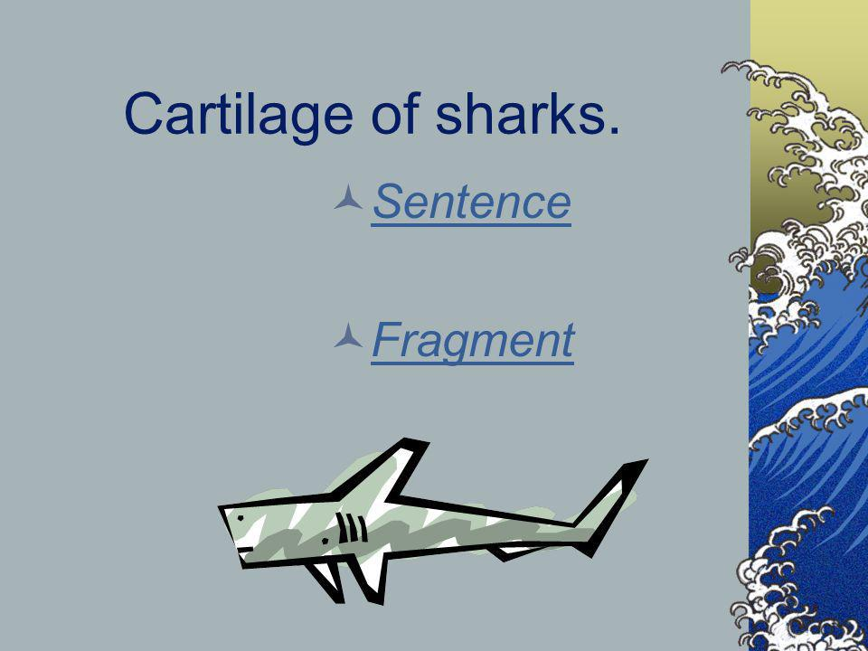 Cartilage of sharks. Sentence Fragment