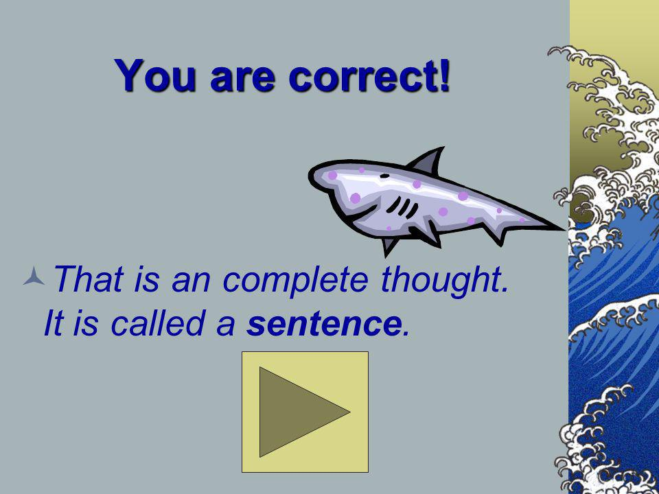 You are correct! That is an complete thought. It is called a sentence.