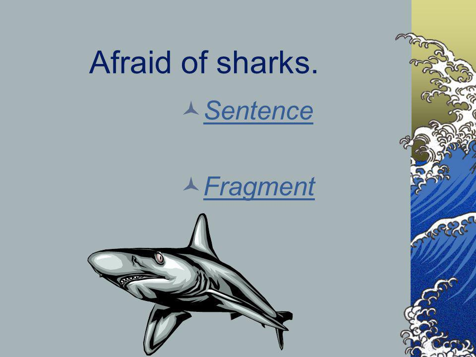 Afraid of sharks. Sentence Fragment