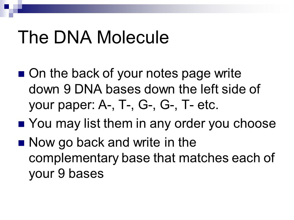The DNA Molecule On the back of your notes page write down 9 DNA bases down the left side of your paper: A-, T-, G-, G-, T- etc.