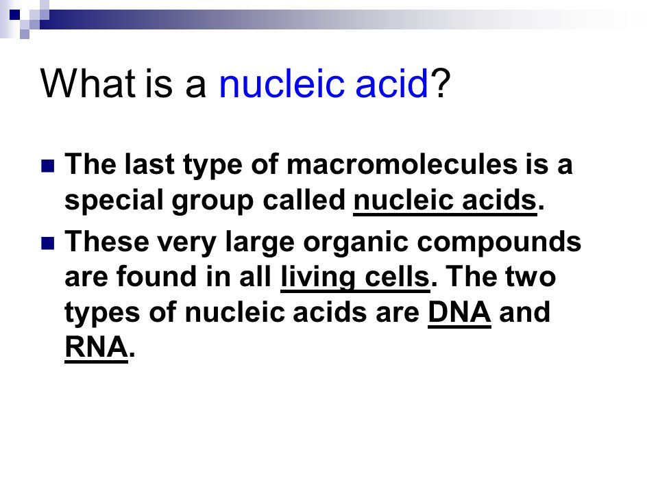 What is a nucleic acid The last type of macromolecules is a special group called nucleic acids.