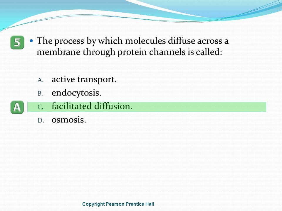 facilitated diffusion. osmosis.