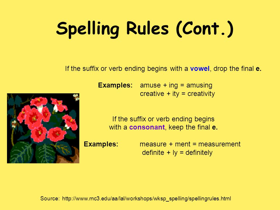 Spelling Rules (Cont.) If the suffix or verb ending begins with a vowel, drop the final e. Examples: amuse + ing = amusing