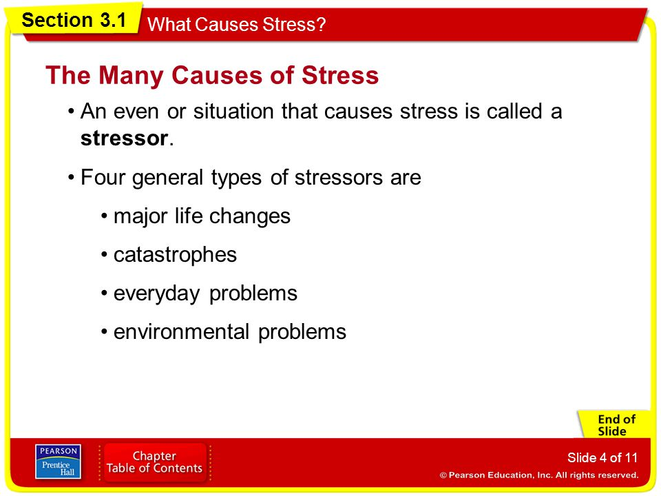 The Many Causes of Stress