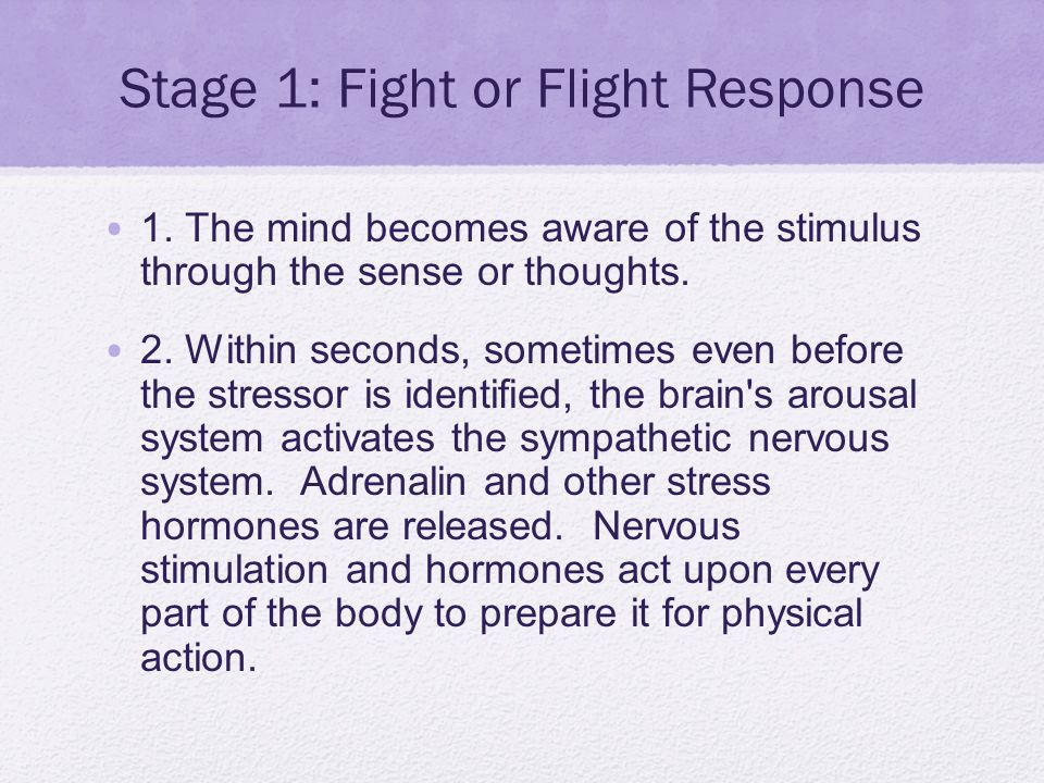 Stage 1: Fight or Flight Response