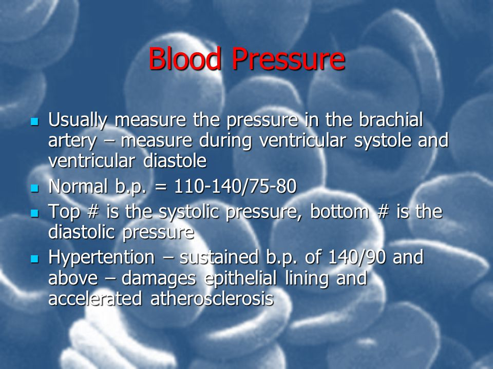 Blood Pressure Usually measure the pressure in the brachial artery – measure during ventricular systole and ventricular diastole.