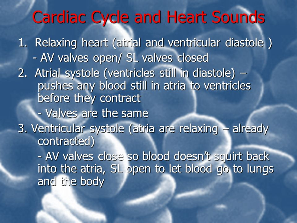 Cardiac Cycle and Heart Sounds