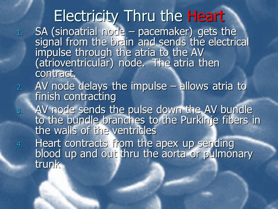 Electricity Thru the Heart