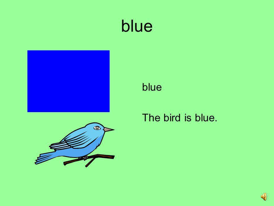 blue blue The bird is blue.