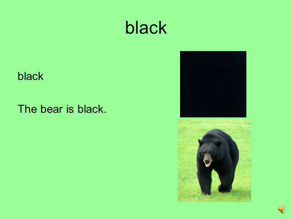 black black The bear is black.