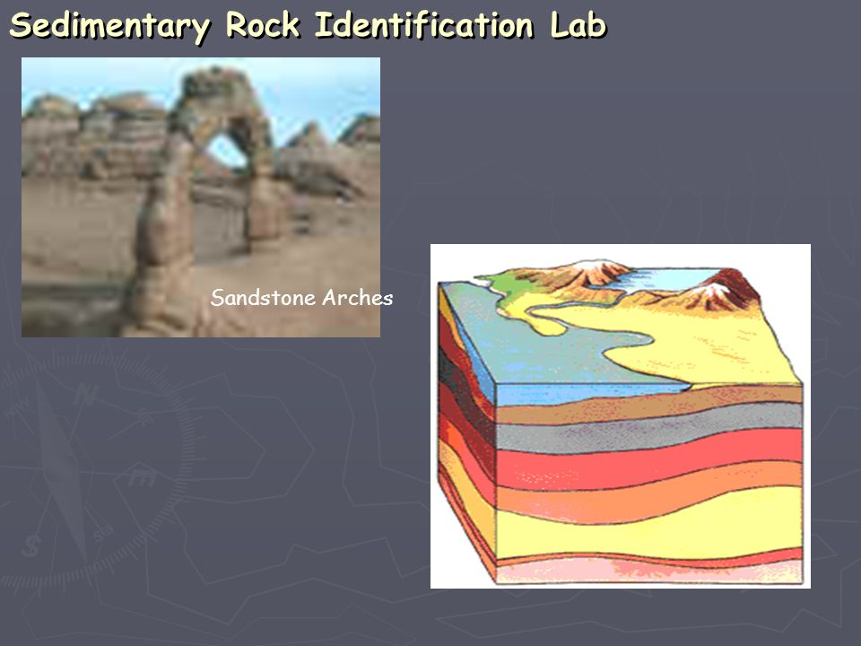 Sedimentary Rock Identification Lab