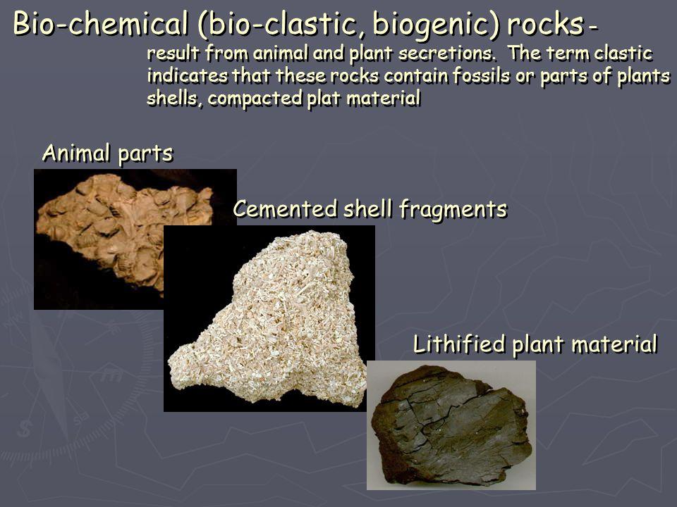 Bio-chemical (bio-clastic, biogenic) rocks –