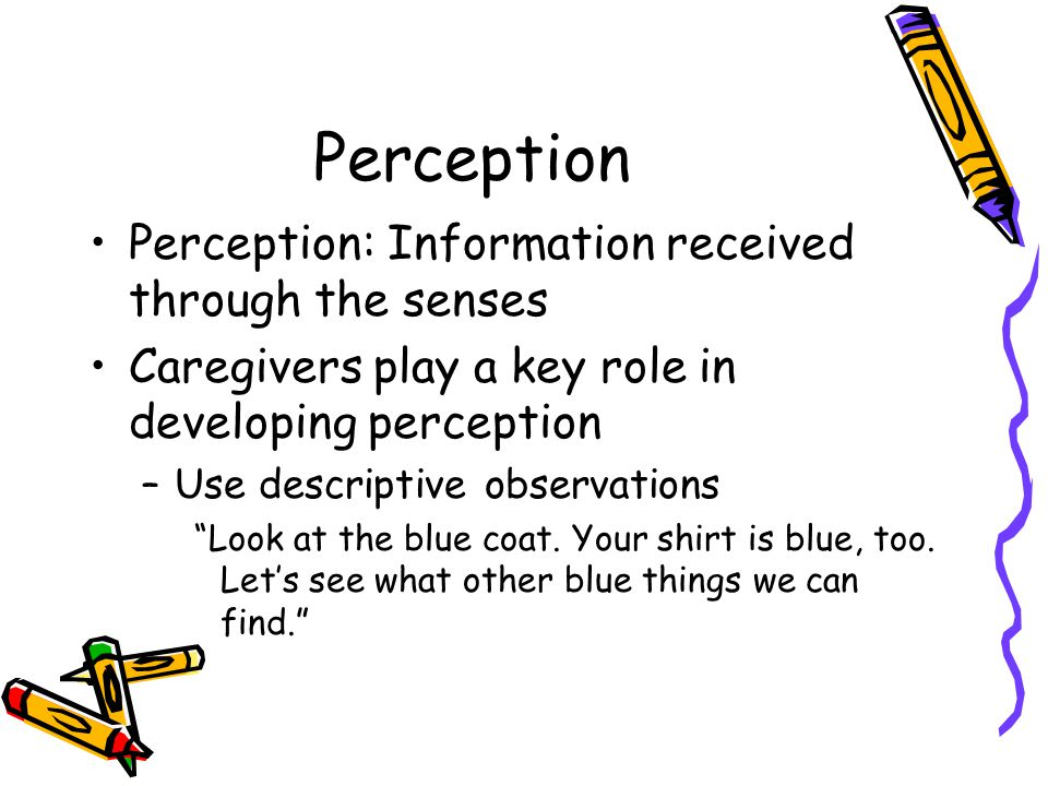 Perception Perception: Information received through the senses
